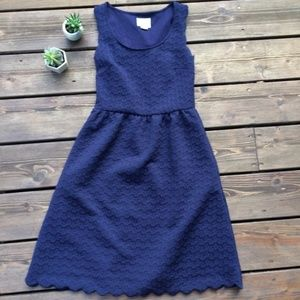 Anthropologie Maeve XS Navy Lace Scalloped Dress